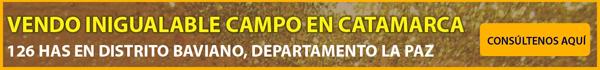 VENDO INIGUALABLE CAMPO EN CATAMARCA